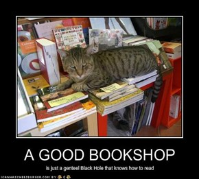 A GOOD BOOKSHOP