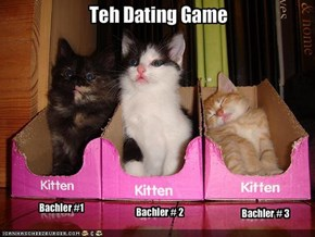 Teh Dating Game