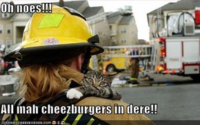 Oh noes!!!  All mah cheezburgers in dere!!