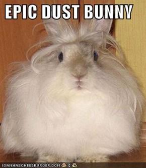 EPIC DUST BUNNY
