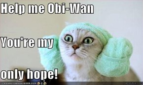 Help me Obi-Wan You're my only hope!