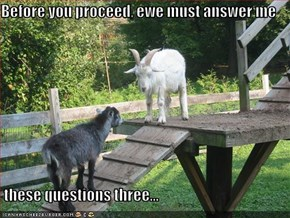 Before you proceed, ewe must answer me   these questions three...