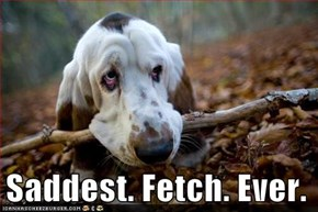 Saddest. Fetch. Ever.
