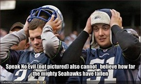 Speak No Evil (not pictured) also cannot   believe how far the mighty Seahawks have fallen