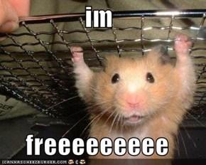im  freeeeeeeee