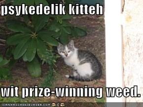 psykedelik kitteh  wit prize-winning weed.
