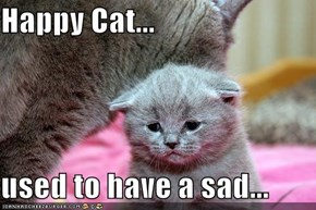 Happy Cat...  used to have a sad...