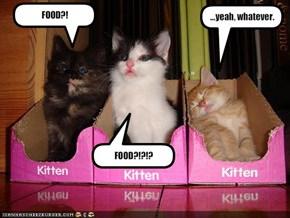 FOOD?!