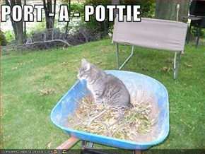 PORT - A - POTTIE