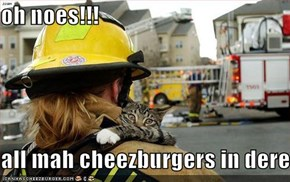 oh noes!!!  all mah cheezburgers in dere