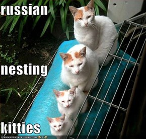 russian nesting kitties