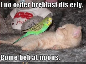 I no order brekfast dis erly.  Come bek at noons.
