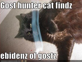 Gost hunter cat findz  ebidenz of gostz