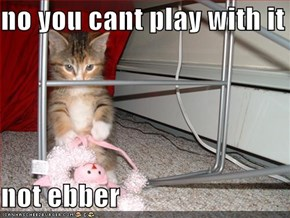 no you cant play with it   not ebber