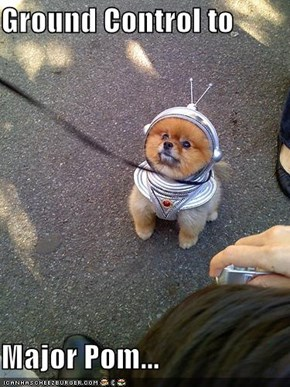 Ground Control to   Major Pom...