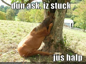 dun ask. iz stuck  jus halp