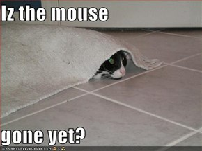 Iz the mouse  gone yet?