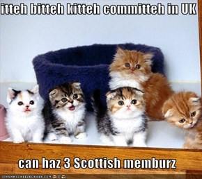 itteh bitteh kitteh committeh in UK  can haz 3 Scottish memburz
