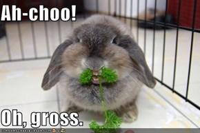 Ah-choo!  Oh, gross.