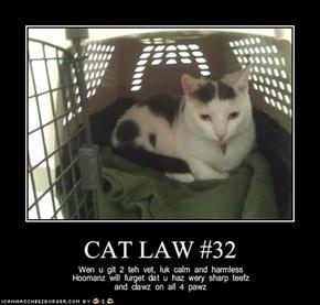 CAT LAW #32