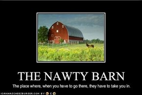THE NAWTY BARN