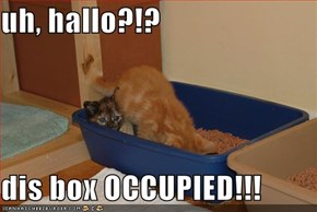uh, hallo?!?  dis box OCCUPIED!!!