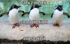 step 2 the left step 2 the right and shake it