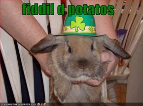 fiddil d potatos