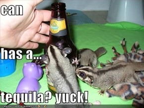 can has a... tequila? yuck!