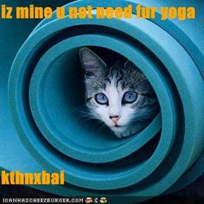 iz mine u not need fur yoga   kthnxbai