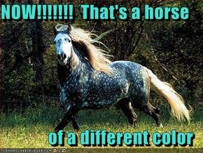 NOW!!!!!!!  That's a horse  of a different color