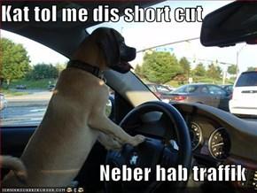 Kat tol me dis short cut  Neber hab traffik