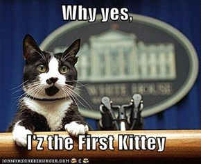 Why yes,  I'z the First Kittey