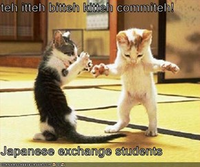 teh itteh bitteh kitteh commiteh!   Japanese exchange students