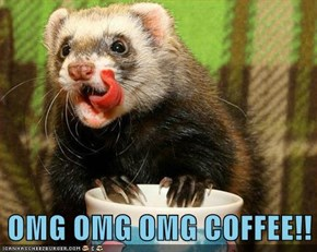 OMG OMG OMG COFFEE!!