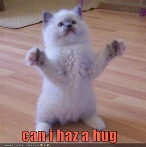 can i haz a hug