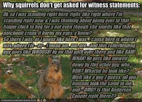 Why squirrels don't get asked for witness statements: