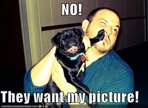 NO!   They want my picture!