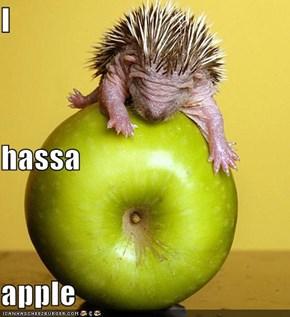I  hassa apple