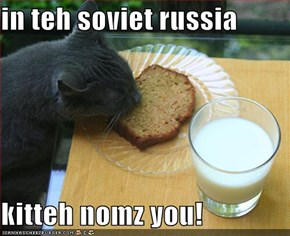 in teh soviet russia  kitteh nomz you!