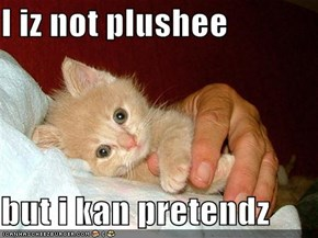I iz not plushee  but i kan pretendz