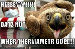HEEEEYYY!!!!! DATZ NOT WHER THERMAMETR GOEZ!!!