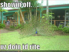 showin off.  uz doin id rite