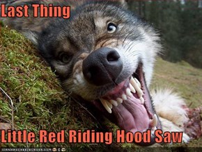 Last Thing  Little Red Riding Hood Saw