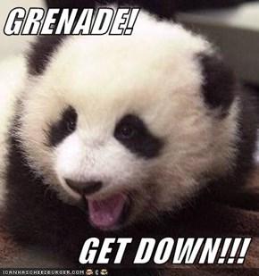 GRENADE!  GET DOWN!!!