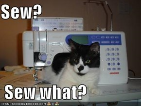 Sew?    Sew what?