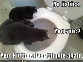 No fishies. You sure?     Yep. Hit the silver thingie again.