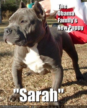 The Obama Family's  New Puppy