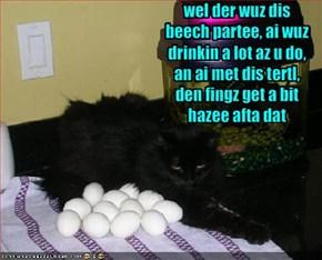 wel der wuz dis beech partee, ai wuz drinkin a lot az u do, an ai met dis tertl, den fingz get a bit hazee afta dat