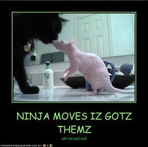 NINJA MOVES IZ GOTZ THEMZ
